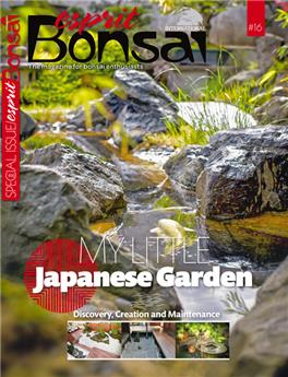 Special Issue #16 - My little Japanese garden