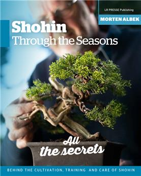 Shohin through the seasons
