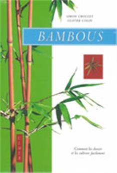 Bambous - Comment les choisir et les cultiver