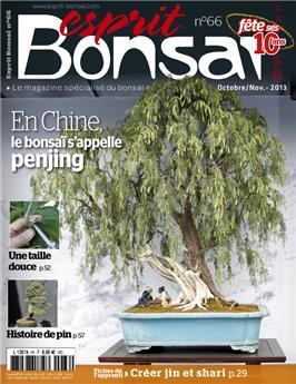 Esprit-Bonsaï n° 066
