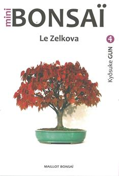 Mini Bonsaï - Le Zelkova