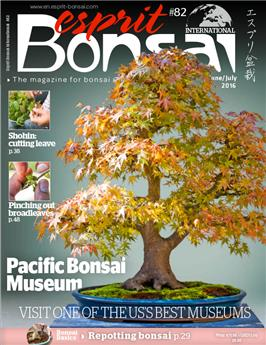 Esprit Bonsai International #82 June-July 2016