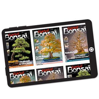 Abonnement Esprit Bonsaï version numérique