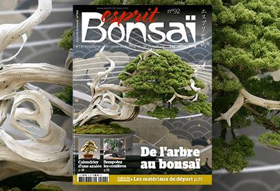 Esprit Bonsaï n°92 Février-Mars 2018 De l'arbre au bonsaï