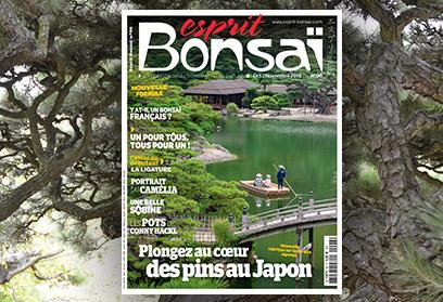 Esprit Bonsaï n°96 Octobre-Novembre 2018 Dans les jardins japonais